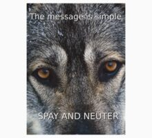 Angel On Call Dog Rescue Spay and Neuter Message by Mitch Labuda