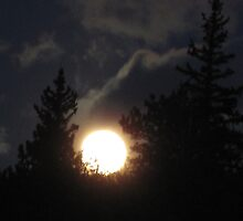 bad moon rising by Christine Ford