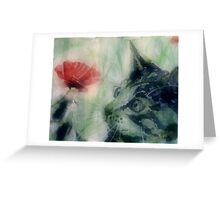Kitty in the poppies Greeting Card