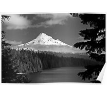 MT. Hood in Black and White Poster