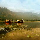 Dal Lake  by Naveen  Sharma