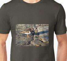 Turnstone At The Cobb Unisex T-Shirt