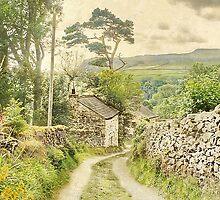The Hamlet Of Wharfe ~ Yorkshire by patrixpix