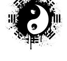 Yin Yang by Emir Simsek