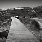 Dune Boardwalk by Neil Messenger