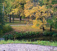 Autumn in the park by Anatoliy Spiridonov