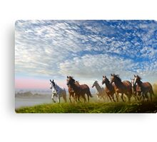 Spirit Of The Prairies Canvas Print