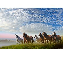 Spirit Of The Prairies Photographic Print