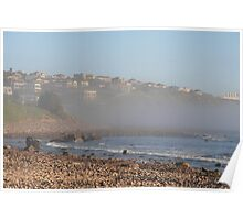 Sea-mist at the Cove,S.A. Poster