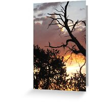 sunset silhoutte Greeting Card