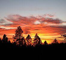 Sky on Fire by Scott Loucks