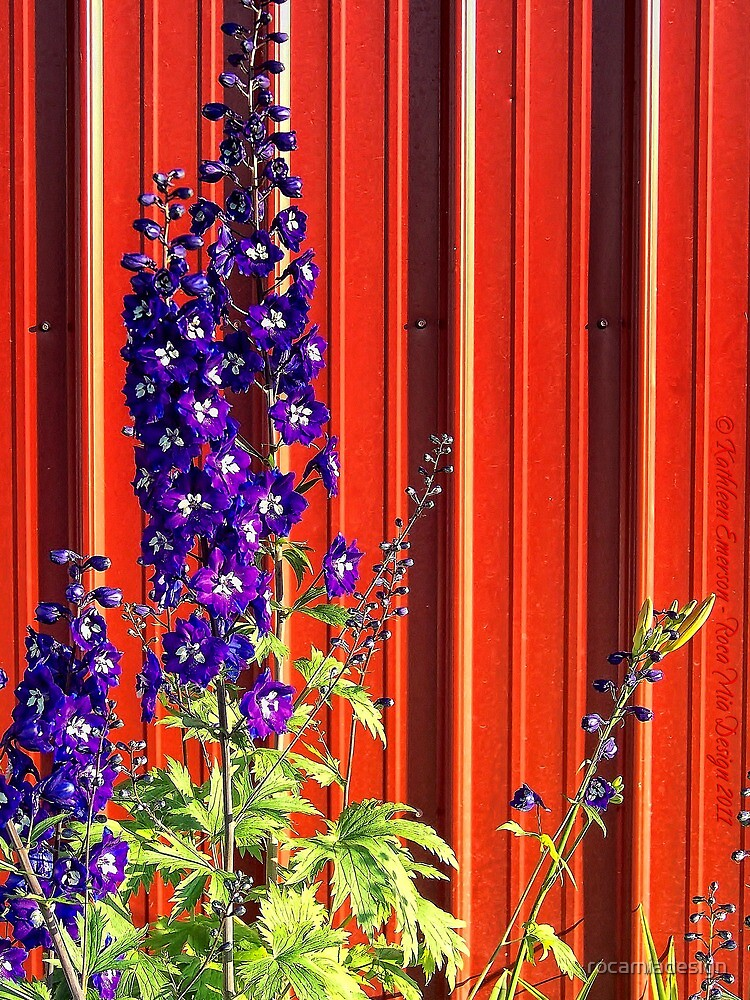 A Clash of Beauty (Lupines) by rocamiadesign