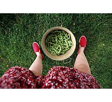 Summer Beans in Tennessee Photographic Print