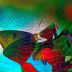 Kaleidoscope Of Colors by Brenda Burnett