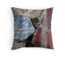 Wall Gems Throw Pillow