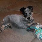 playtime puppy. by elladoor