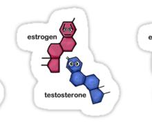 Estrogen & Testosterone Sticker Sheet Sticker