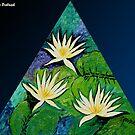Light of Waterlilies by Nira Dabush