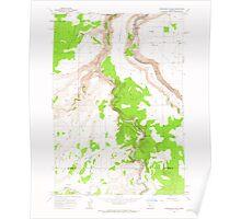 USGS Topo Map Oregon Steelhead Falls 281640 1962 24000 Poster