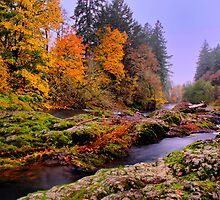 Fall on the Calapooya River by Charles & Patricia   Harkins ~ Picture Oregon