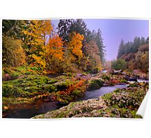 Fall on the Calapooya River Poster