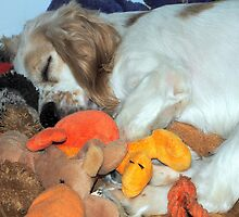 I Love My Toys by DottieDees