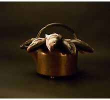 A Kettle of Fish Photographic Print