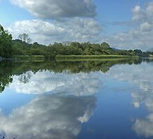 Esthwaite Water Reflections by VoluntaryRanger