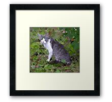 070511 018 0 paint & ink minimum Framed Print