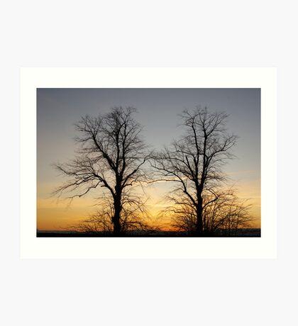 December sky at dusk - two trees Art Print