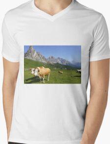 Passo Giau Mens V-Neck T-Shirt