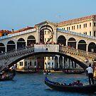 Rialto, Venice by inglesina