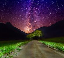The Road to Nowhere by Delfino