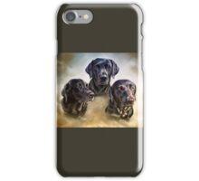 Three companions iPhone Case/Skin