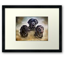Three companions Framed Print