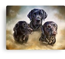 Three companions Canvas Print