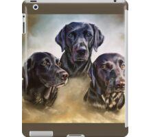 Three companions iPad Case/Skin