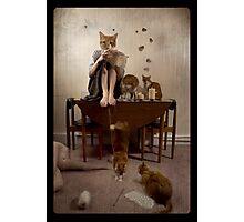 Beatrix' Revenge Photographic Print