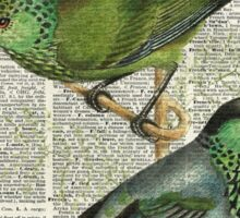 Green Canary Brds Over Vintage Book Page Sticker