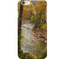 Trout Fishing Stream Crossing Swing iPhone Case/Skin