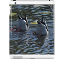 Diving Ducks  iPad Case/Skin