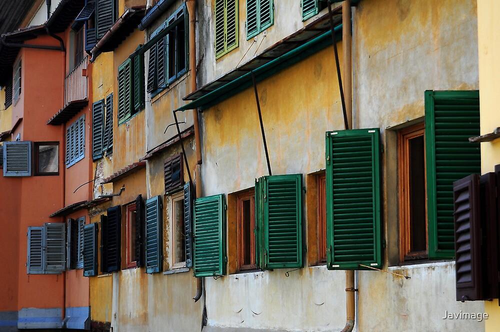 The windows of Ponte Vecchio by Javimage