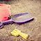 Summer Remnants