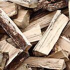 Firewood by Gaspar Avila