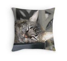 Gentle Tigress Throw Pillow