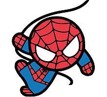 Crazy spider man Photographic Print