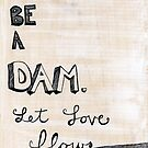 Don't Be A Dam by Lindsay Coleman