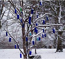 Blue Bottle Winter by J. David Peterson