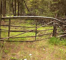 Stick and Twig gate+fence. by Valerie Henry