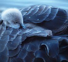 This is soooo cozy. Goodnight Mum. by shortshooter-Al